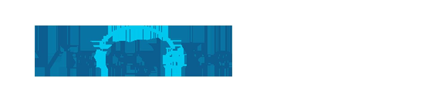 Visioglobe Logo